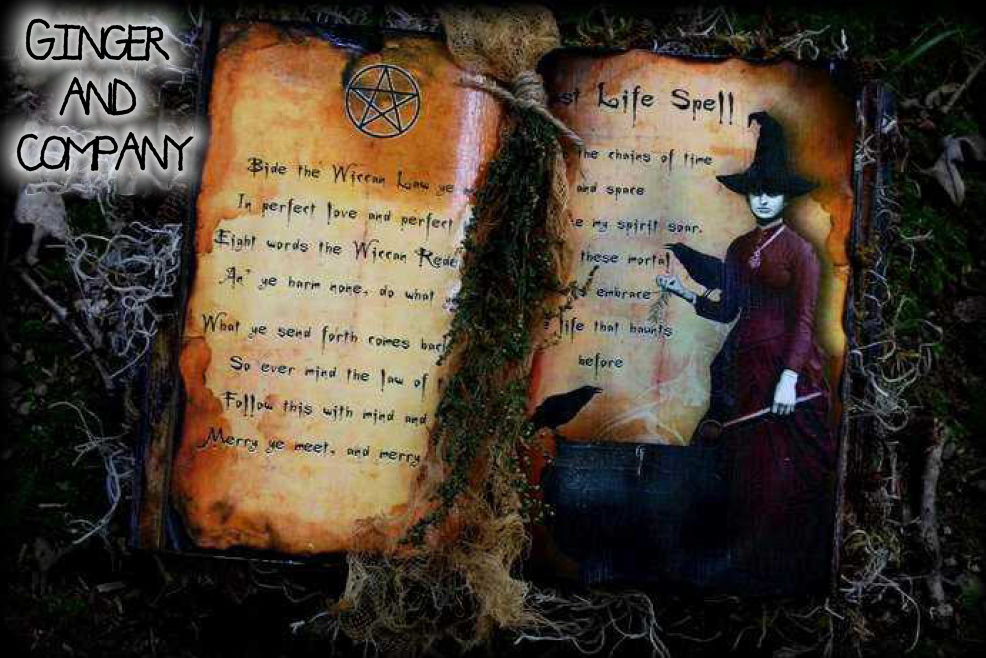 Witch Spell Book OOAK Altered Image